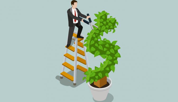 Tributação de dividendos na proposta de reforma tributária